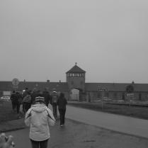 Mars 2009. Birkenau avec les élèves.