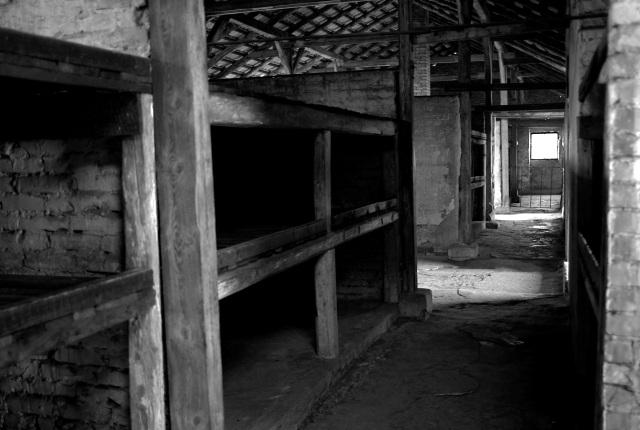 Baraque du camp des femmes de Birkenau B I.  Coya sur trois niveaux. [Photo Marco Tchamp, mars 2011].